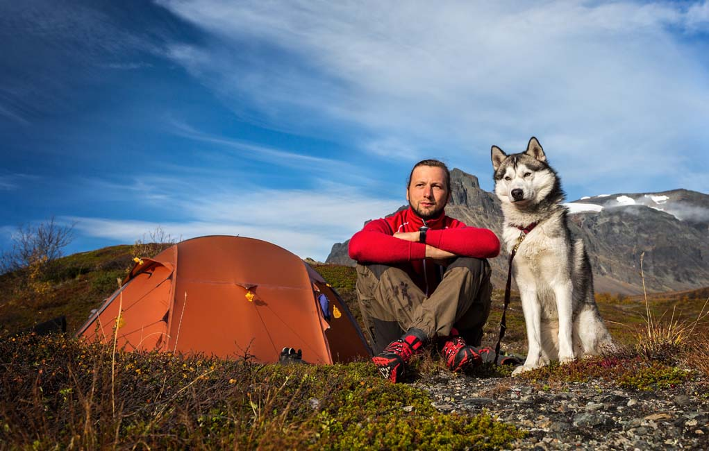 Tips on camping with dog
